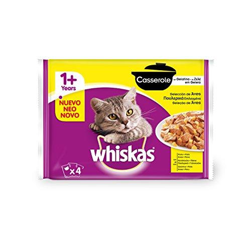 Whiskas Multipack de Comida Húmeda en Gelatina para Gatos Adultos Selección Aves (4 Bolsitas x 100g)