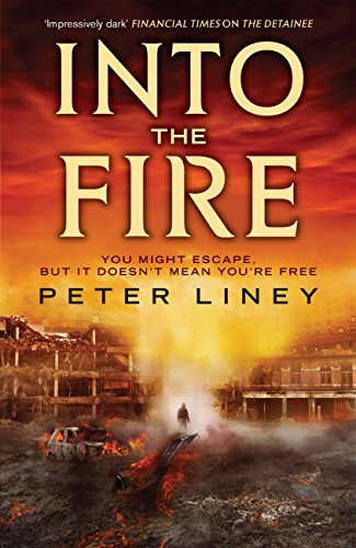 Into The Fire: The Detainee Book 2 (The Detainee Series)
