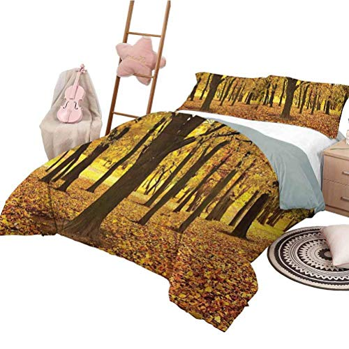 Bedspread Quilt Set Landscape Girls Duvet Cover Set Golden Fallen Leaves Covered Ground Autumn Forest Nature Picture Amber Brown and Yellow California King Size