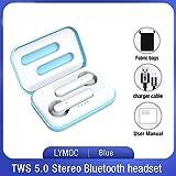 RTYG TWS Senza Fili Auricolari Bluetooth 5.0 Auricolari Worktime 4Hrs Touch Auricolari Stereo delle Cuffie con Microfono for iOS e Android (Color : Blue Fabric Bag)