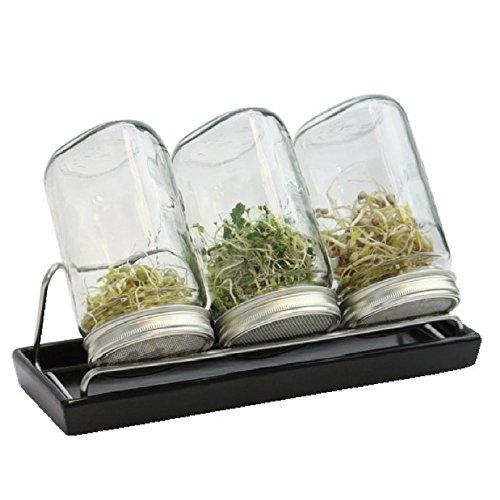 Eschenfelder Sprossengläser System III (anthrazit, 1000 ml), Glas