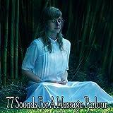 77 Sounds for a Massage Parlour