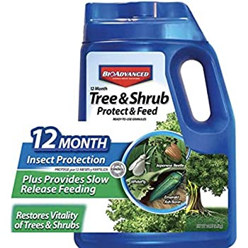 BioAdvanced 701910A 12-Month Shrub Protect & Feed Insect Killer and Tree Food, 10-Pound, Granules