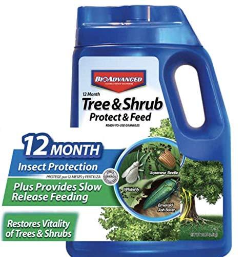 Best drjimz fertilizer for 2021