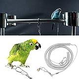 HEEPDD Guinzaglio Regolabile per Pappagallo, 6m Anti-morso Corda di Allenamento per Uccello per Uccelli di Taglia Piccola African Grey Cockatoo Macaw Ringneck(Diapiede 8,5 Millimetri)
