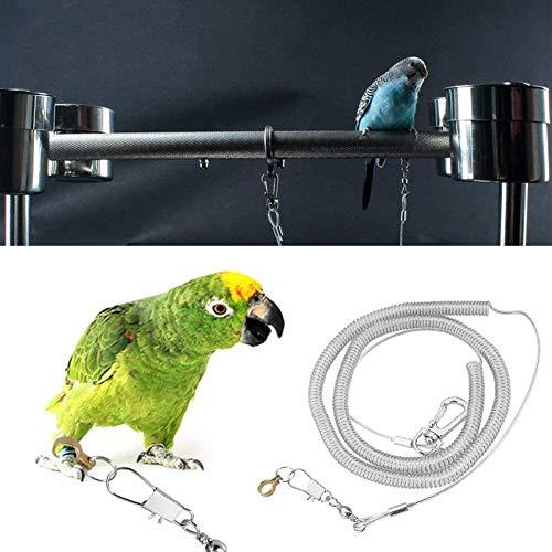 6m Papagei Vogel geschirr Leine außen fliegen trainieren Seil Heimtierbedarf für Macaw African Greys Parakeet Cockatoo Nymphensittich Conure Lovebird