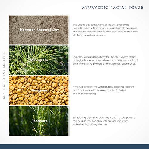 Annmarie Skin Care Ayurvedic Facial Scrub - Gentle Facial Exfoliant with Rosemary, Moroccan Rhassoul Clay + Fenugreek (50 Milliliters, 1.7 Fluid Ounces)