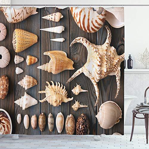 ABAKUHAUS Muscheln Duschvorhang, Land Beach Shell, Personenspezifisch Druck inkl.12 Haken Farbfest Dekorative mit Klaren Farben, 175 x 200 cm, Multicolor