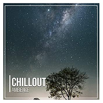Chillout Ambience, Vol. 14