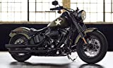Guardabarros delantero delantero Fender Harley Davidson Soft