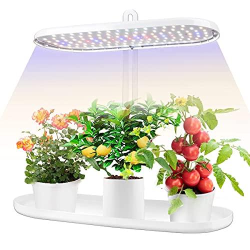 Indoor Garden Led Grow Light:Herb Seeds Kitchen...