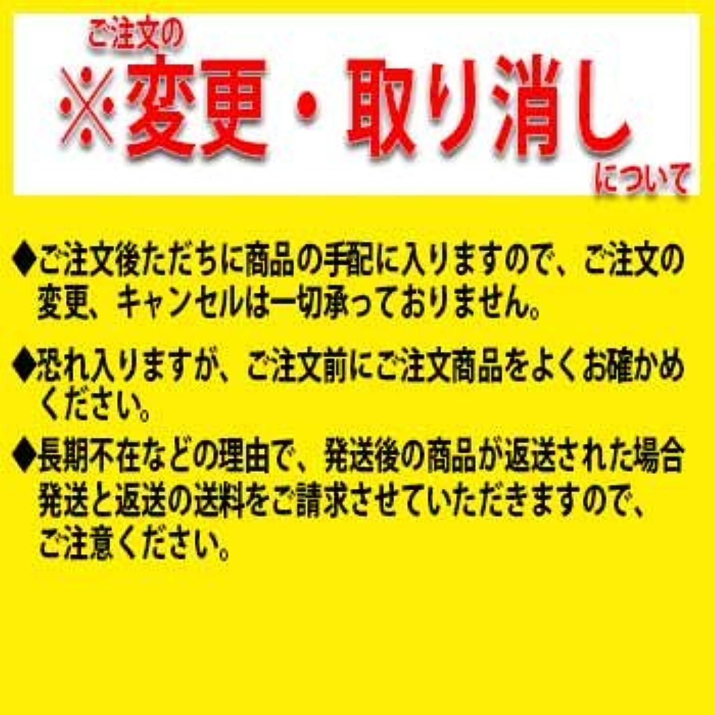 イースターベンチ常習的京都機械工具(KTC) 25.4sq.ソケット(十二角) B50-100