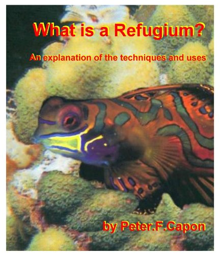 What is a Refugium (English Edition)