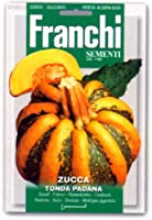 【FRANCHI社種子】【145/13】パンプキン TONDA PADANA