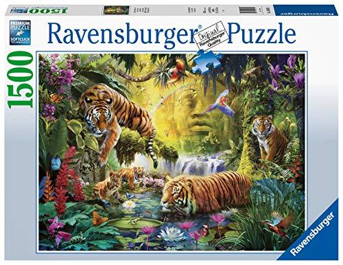 Ravensburger- Puzzle 1500 pièces Tigres au Plan d'eau Adulte, 4005556160051