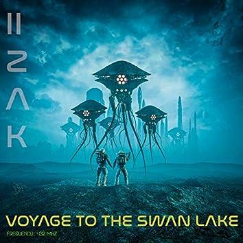 Voyage to the Swan Lake