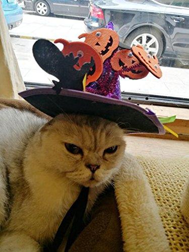 ペット 帽子 ハロウィン 仮装 犬 猫 カボチャ 帽子 かわいい コスチュームネコちゃん ワンちゃん ハロウィ...