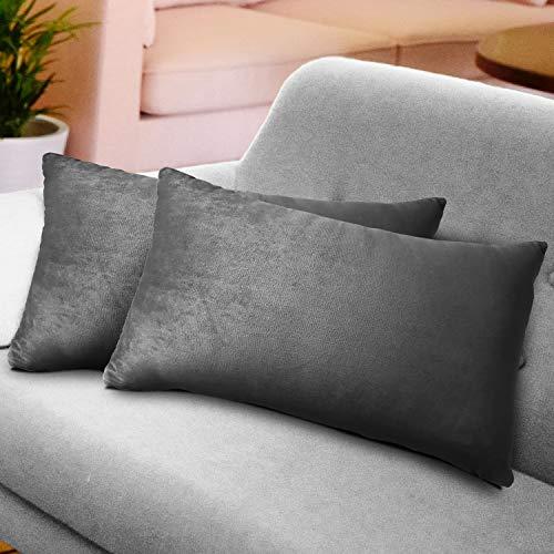 WEYON 2er Set Samt Kissenbezug Dekorative Dekokissen Kissenhülle mit Strapazierfähigem Verstecktem Reißverschluss für Sofa Schlafzimmer Auto 40X80cm Hellgrau