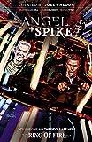 Angel & Spike Volume 1 (3)