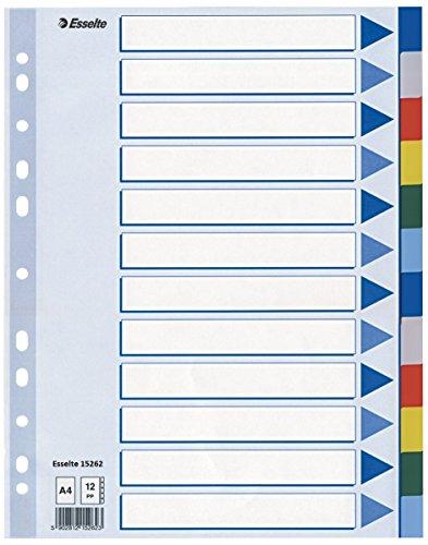 Esselte Register für A4, Deckblatt und 12 Trennblätter mit Taben, Mehrfarbig, Robuster Kunststoff, 15262