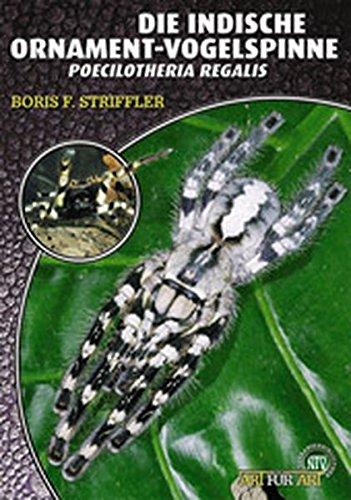 Die Indische Ornamentvogelspinne: Poecilotheria regalis (Art für Art / Terraristik)