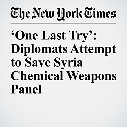 'One Last Try': Diplomats Attempt to Save Syria Chemical Weapons Panel copertina