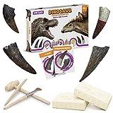 Dinosaur Claw & Tooth Fossils - Stegosaurus & T Rex Fossil Kits - Dinosaur Teeth Fossils Excavation Kit - Digging Dinosaur Archeology Kit For Kids - Dinosaur Dig Kit Toy - Dinosaur Tooth Fossil Dig