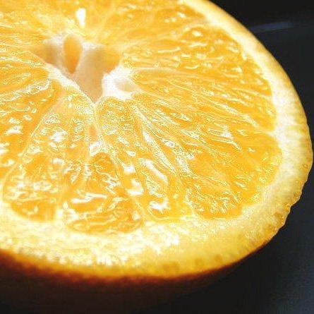 八朔・樹なり完熟さつき八朔 5kg 秀品(ギフト選別品)和歌山県産有田みかんの産地から