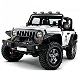 U-Drive Auto 2007-2018 Jeep Wrangler JK 2/4 Door Black Textured Fender Flares with LED Lights (Drilling Required)