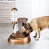 Ccgdgft Gato del Perro casero alimentador automático de 2 en 1 con Gran Capacidad de Agua de la Fuente comederos y Soporte de la Botella del dispensador de Conejo del Gato del Perro (Color : Gold)