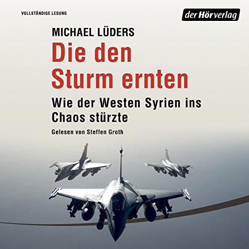 Die den Sturm ernten audiobook cover art