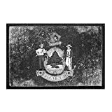Maine State Flag...image