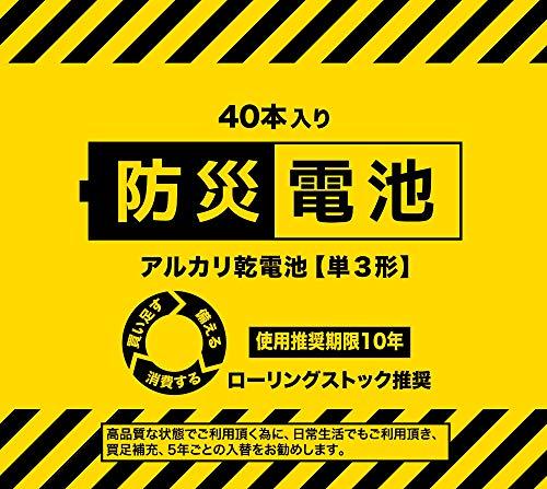 防災シリーズ 防災電池 10年長期保存 (単3形-40本パック×1)