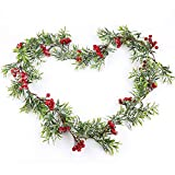 Frgasgds Christmas Garland