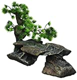 Penn-Plax rr992Grande Bonsai árbol sobre Rocas