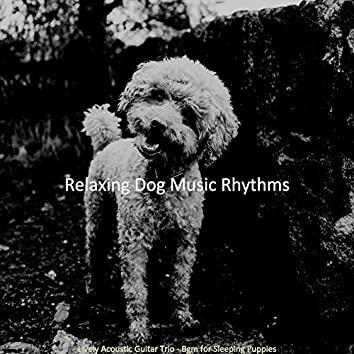 Lively Acoustic Guitar Trio - Bgm for Sleeping Puppies