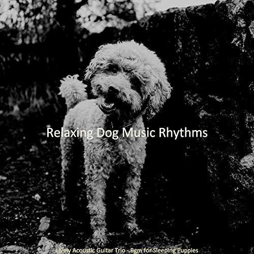 Relaxing Dog Music Rhythms