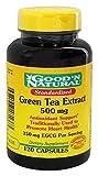 Good N Natural - Standardized Green Tea Extract 500 mg (800 mg...