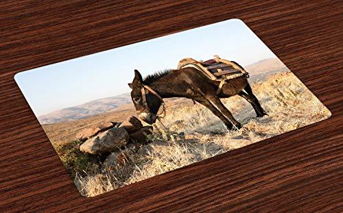ABAKUHAUS Esel Platzmatten, Griechischer Esel Oben in den Bergen von Lesvos-Insel im Mittelmeer-Digital-Bild, Tiscjdeco aus Farbfesten Stoff für das Esszimmer und Küch, Mehrfarbig