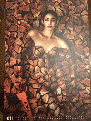 Stihl 2018 Arborist Calendar with Women and Man