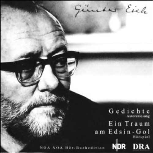 Ein Traum am Edsin-Gol Titelbild