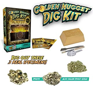 Dig for Gold Science Kit – Dig Up Real Pyrite Nuggets (Fool's Gold)