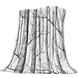 Flannel Fleece Throw Blankets for Bed/Couch, Soft Warm Fuzzy Plush Microfiber All-Season Lightweight Sofa Blanket Stadium Throws - Throw 40x50 Inch White Birch Forest Old Branches Tree Grey
