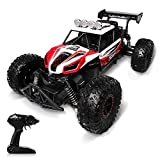 RC Cars Toy, Remote Control Car 1:14 High Speed 25km/h 2WD Off Road Racing Trunk All Terrain Electric Toy RC Monster Vehicle Car Crawler for 3 4 5 6 7 8 Years Old Gift