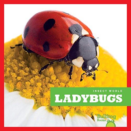Ladybugs (Insect World)