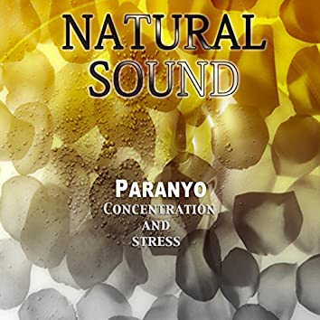 Natural Sound Concentration and Stress
