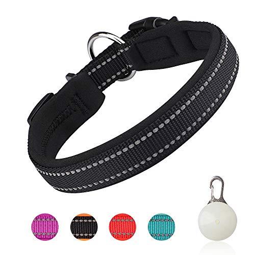 Einstellbare Hundehalsband Nylon Reflektierend Neopren Gepolstert Verstellbar Halsband Große Kleine Hundehalsbänder Leichtes Welpenhalsband mit Hundelicht - Schwarz -XL
