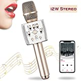 Bluetooth Karaoke Microphone Dual Speaker Loud 12W | Professional Echo Vocal Cut | 3in1 Wireless Singing Mic Machine | Party Car Outdoor | for iPhone Android | Kids Adults Premium Gift | Gold -Plafnio