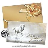 25 Premium Geschenkgutscheine zum Falten + 25 Kuverts + 25 Schleifen für Reitsport, Pferdesport, Reitsportartikel, Reitzubehör SP229 pos-hauer