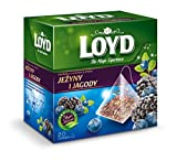 LOYD Tee mit Brombeeren und Beerengeschmack 20 Beutel
